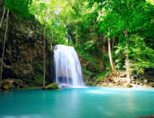 I nove parchi del Sud: biodiversità e paesaggi unici – Tour 14 giorni