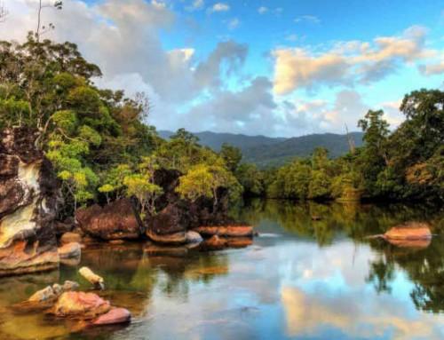Tour di 7 giorni nel Sud del Madagascar: parchi, risaie e altopiani