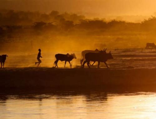 Una vacanza nel sud del Madagascar